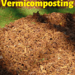DIY Vermicomposting leaf piles in the Fall