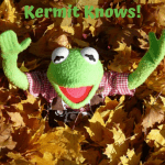 DIY Vermicomposting Kermit in a pile of leaves.