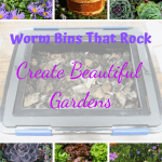 Worm Bins That Rock composting worms in a worm bin and a variety of harvested vegetables