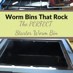 Worm Bins That Rock worm bin and lid.
