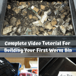 Worm Bins That Rock building a worm bin.