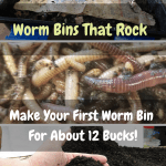Worm Bins That Rock worm bin.