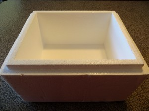 Cheap Worm Bins - Styrofoam box