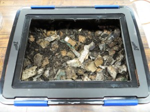 Cheap Worm Bins - Ziploc Storage Box