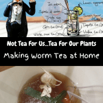 Making Worm Tea at Home cartoon character with long island ice tea, a recipe, and a bucket of worm tea brewing.