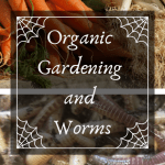 Organic Gardening and Worms variety of vegetables.