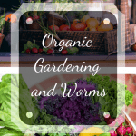 Organic Gardening and Worms produce.