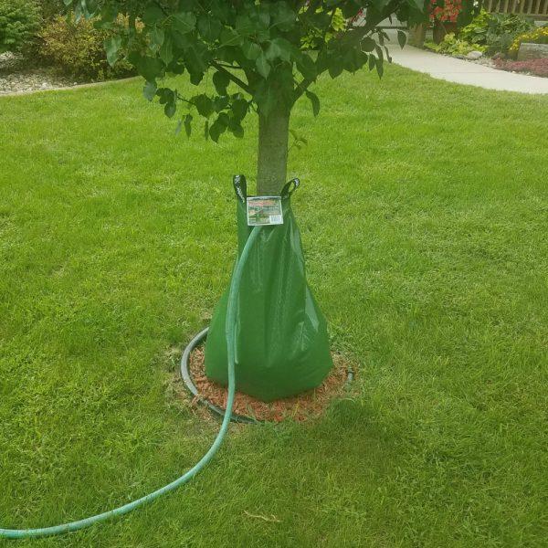 Treegator Original Watering Bag For Trees