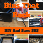 Worm Bins That Rock