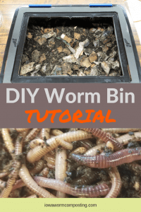 DIY Worm Bin Tutorial Building a worm bin and composting worms
