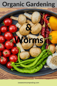 Organic Gardening and worms 3 Vegetable platter of organic produce
