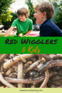 Red Wigglers and Kids 2 Two Kids and a some red wigglers