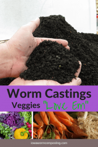 Worm Castings Revealed Veggies Love Em Worm castings and vegetables