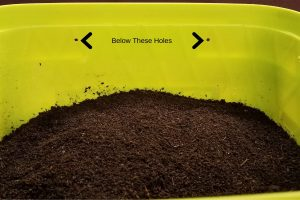 How To Store Worm Castings Bucket with Holes and Worm Castings 1