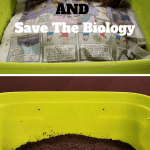 How To Store Worm Castings bucket of worm castings
