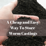 How To Store Worm Castings Pile of Castings_