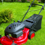 Worms in Lawn lawnmower in a healthy lawn