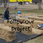 Straw Bale Gardening follow our project