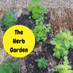 Straw Bale Herb Garden