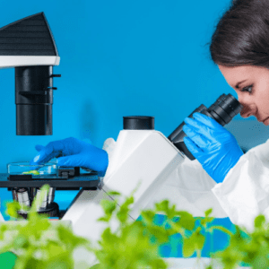 microscope and plants