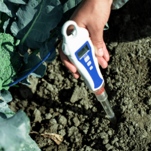 Earthworm Naturals Moisture meter checking soil/