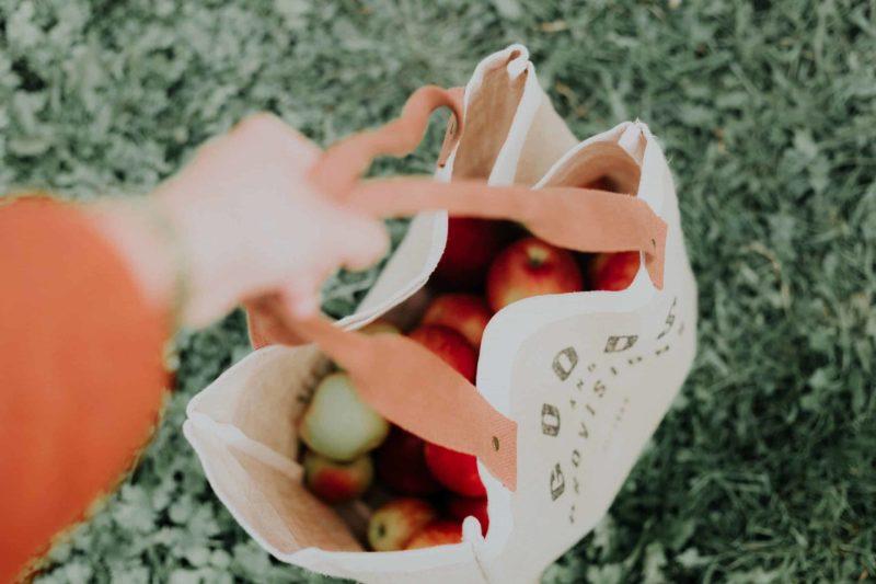 Earth Day Reusable Bag