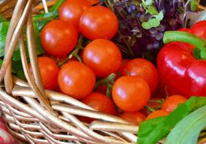 Advantages of Vermicompost vegetable basket.
